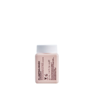 Kevin.Murphy Plumping.Wash Travel Product Image